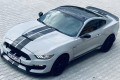 Ford-Mustang-GT350-SHELBY-7