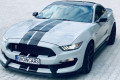 Ford-Mustang-GT350-SHELBY-2