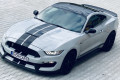 Ford-Mustang-GT350-SHELBY-6