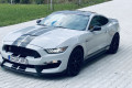Ford-Mustang-GT350-SHELBY-8